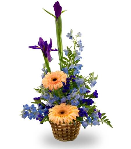 A basket arrangement for a baby boy