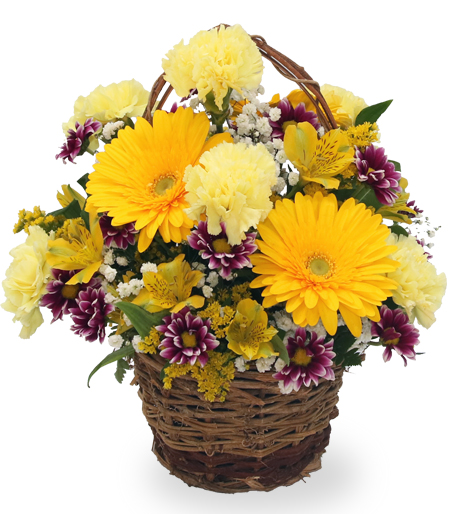 The Happy Yellow Basket