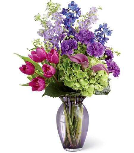 Birthday Flowers For July Larkspur Delphinium