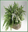 Green and blooming plants basket