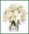 Lush Lily Bouquet