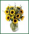 Endless Sunflower Bouquet