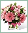 proudly presents the Better Homes and Gardens Blooming Visions Bouquet. Offer them a bouquet blooming with a