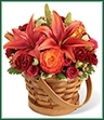 The Abundant Harvest Basket is bejeweled in Autumn's most majestic hues creating an arrangement of blooming beauty.  Dark orange Asiatic Lilies, bi-colored orange roses, burgundy miniature carnations, fuchsia spray roses, peach hypericum berries and millet grass are bountifully displayed in a natural wood basket to celebrate the inspiring beauty of this coming harvest season.