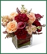 The Share My World Bouquet blooms with modern sophistication and elegance to bring your special recipient a truly exquisite gift. Peach roses, peach stock, burgundy mini carnations and plum mini calla lilies are simply fantastic accented with heather stems and seated in a clear glass cubed vase. Variegated ti leaves and red flax leaves are used to line the inside of the vase for an appealing look making this brilliant bouquet set to extend your warmest wishes and sweet affection with its blushing color and array of textures.