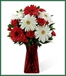 The Instant Happiness Bouquet is set to bring cheer and joy to your special recipient with each eye-catching bloom! White gerbera daisies pop against the rich reds of gerbera daisies and mini carnations. Accented with lush greens and seated in a ruby gathered square glass vase, this bouquet is an incredible way to add to the beauty of their day.