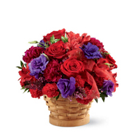 The Basket of Dreams