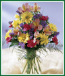 Festive Wishes Bouquet