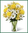 The Sunny Sentiments Bouquet is a blooming expression of charming cheer. Brilliant yellow roses and Peruvian Lilies are paired with white traditional daisies and green button poms to create a memorable bouquet. Accented with lush greens and arranged in a classic clear glass vase, this bouquet is a wonderful way to celebrate any of life's special moments.