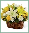 The Nature's Bounty Basket bursts with the beauty of floral brilliance. Yellow roses, Peruvian lilies, solidago and LA Hybrid lilies are arranged amongst white ranunculus, chrysanthemums and LA Hybrid lilies accented with lush greens for an eye-catching look. Presented in an oval banana leaf woven basket, this sunlit arrangement will warm your special recipient's heart with its blooming perfection. GOOD arrangement includes 13 stems. Approx. 12