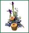 A basket of blue delphinium, blue iris and gerbera.