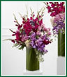 The Whispering Love Arrangement is an exquisite display of limitless beauty that is a blooming tribute to the life of the deceased. Lavender roses, magenta gladiolus, purple mokara orchids, purple trachelium, pink bouvardia, and pink hydrangea blooms are accented by lush greens and arranged in a clear glass cylinder lined with ti leaves to create a moving presentation that exudes love, warmth and comfort at their final memorial service.